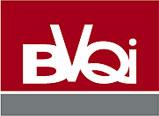 logo bvqi